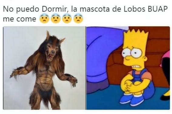 El meme del dia